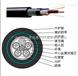 48芯光纜多少錢一米_48芯光纜出廠價