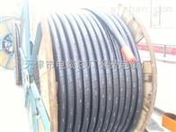 【BP-VVP变频电缆】-【BP-VVP变频电力电缆】《天津小猫牌》