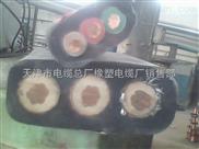 生产销售 UGEFBP-3*50扁平电缆 Z新报价