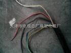 YZW 3*10+2*6橡套电缆价格