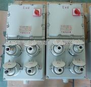 防爆动力检修电源箱BXX52-3型号,各种防爆配电箱厂家