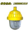 BFS8801〔BFS8801〕BFS8801厂家直销「BFS8801」轻型防爆平台灯