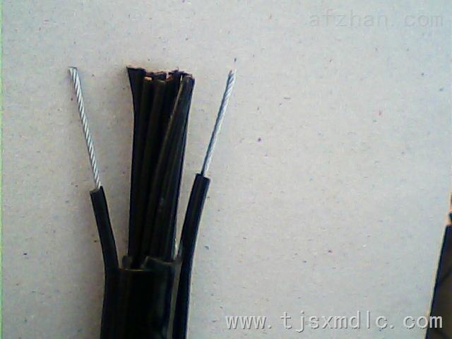 kvrcyc-j小猫牌加钢丝型电葫芦电缆