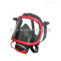 综合过滤式防毒面具