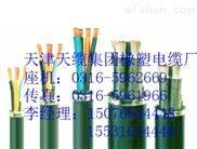 齐全变频器专用电缆-BP-YJVP3-3*50+3*1