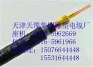 烟台RVVZ-2*25通信电源用软电缆 价格