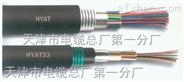 铠装控制电缆ZR-KVV22-报价