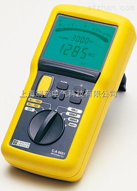 CA6531 数字绝缘测试仪