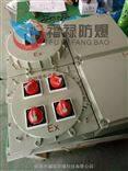 BXMDBXM51-T3/100K带总开关防爆照明动力配电箱