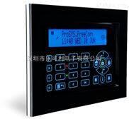 RP128KPP1-以色列RISCO触摸屏键盘