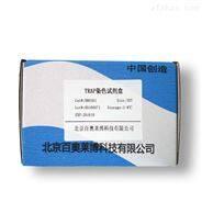 新布尼亚病毒荧光PCR检测试剂盒优惠价