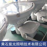GT9401金卤灯_紫光GT9401防震型投光灯价格