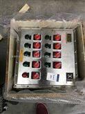 BXK(IIB、IIC、DIP) 不锈钢亿博娱乐官网下载控制箱|3mm板材