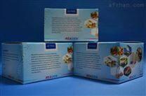 α-淀粉酶测试盒100管/48样售后服务