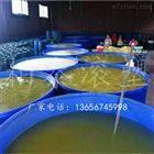 3米直径养鱼池 6000L圆桶哪有卖