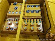 BXM--工地用带防护外箱户外防爆配电检修箱
