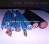 国产电缆 PUYAV矿用通信电缆 质优价廉