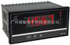WP-C804数显仪