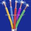 ZR-RVV电缆;ZR-RVV多芯阻燃电源线