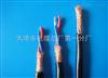 RVSP22铠装双绞屏蔽电缆