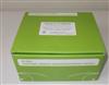大鼠γ干扰素试剂盒